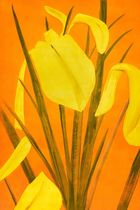 Galerie Frank Fluegel - Alex Katz Yellow Flags 4